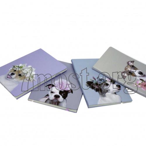 Тетрадь №706 с бумаж. облож. с рис. животные 4рис 80стр. клетка с резин. 36к (120)